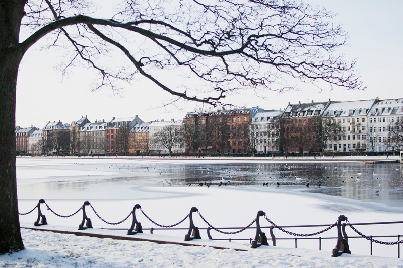 Danes start the new year with a bang | Rebecca Hawkes Diary