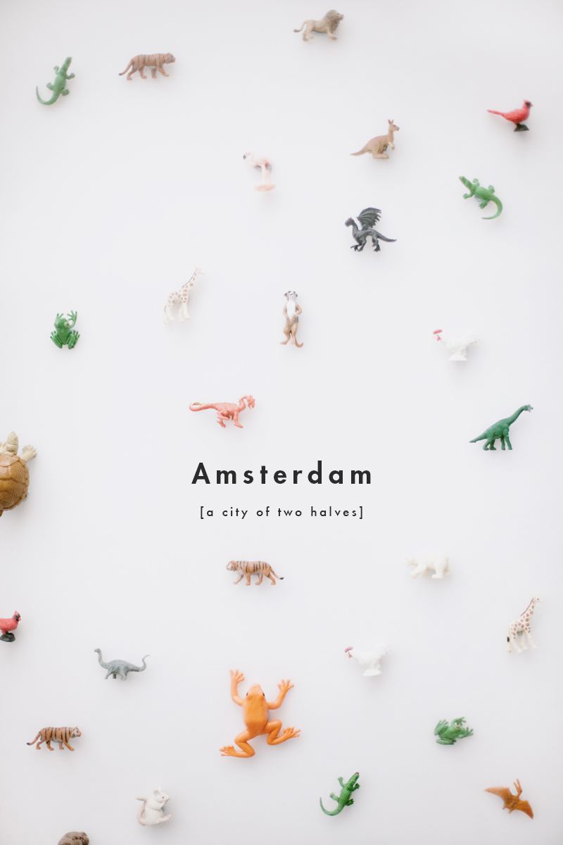Amsterdam | A city of two halves | Rebecca Hawkes Diary