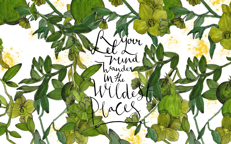 Rebecca Hawkes x Maisie Noble © Let your mind wander in the wildest places white thumb